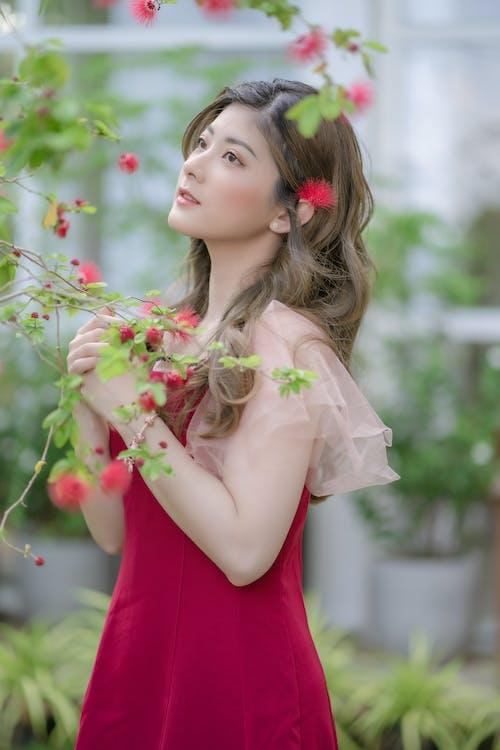Kostnadsfri bild av blomma, bröllop, elegant