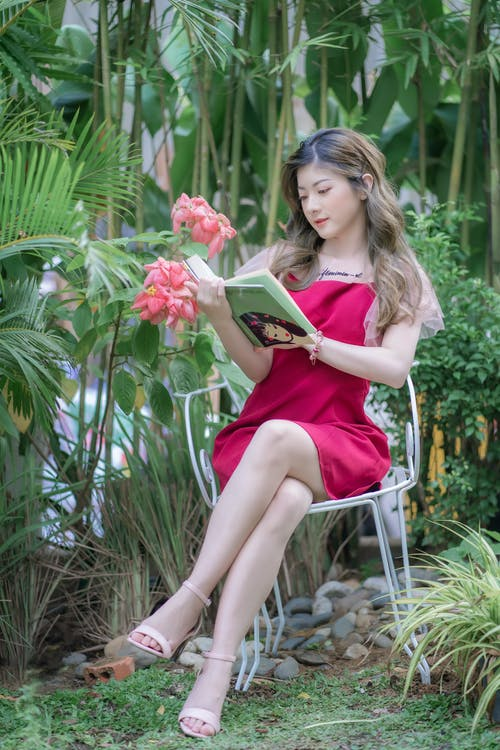 Kostnadsfri bild av avslappning, blad, blomma