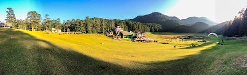 Free stock photo of beautiful, green, himalayas