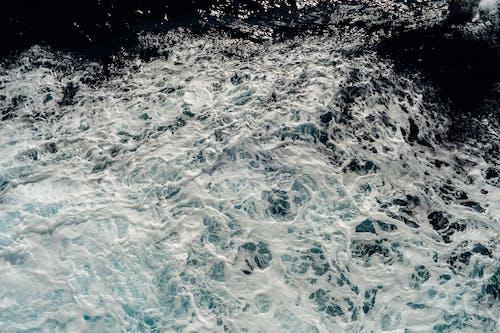 招手, 揮手, 水波 的 免費圖庫相片