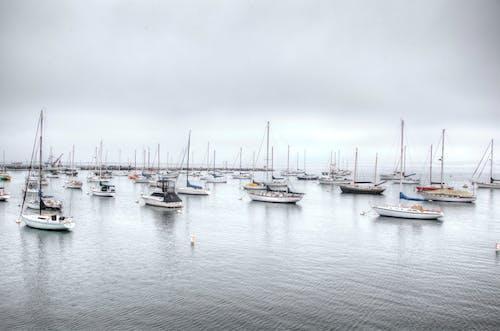 Free stock photo of bay, boats, fishing boat