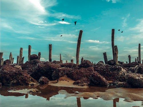 Immagine gratuita di acqua, azzurro, cielo, luce del giorno