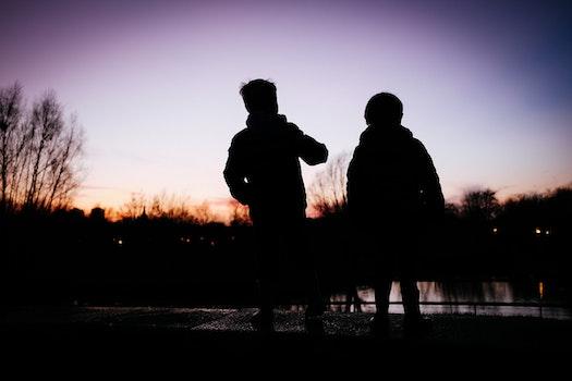 Free stock photo of silhouette
