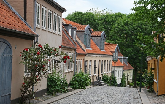 Beige and Brown Painted Houses