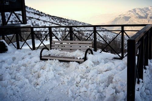 Foto profissional grátis de beleza, Branca de Neve, branco, cadeira de madeira