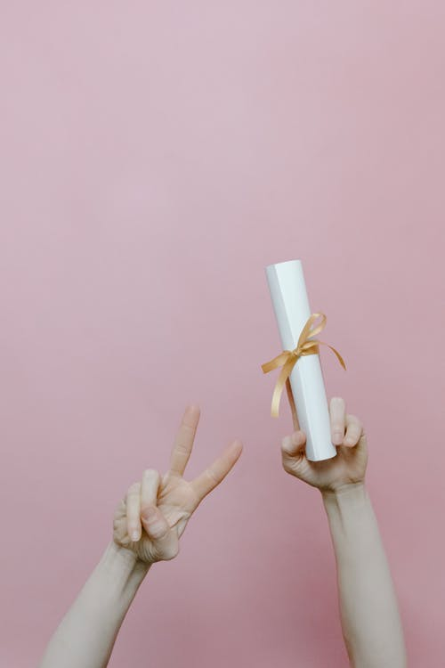 Person Holding White Plastic Toy