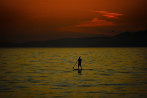 Imagine de stoc gratuită din omul pe paddleboard la apusul soarelui