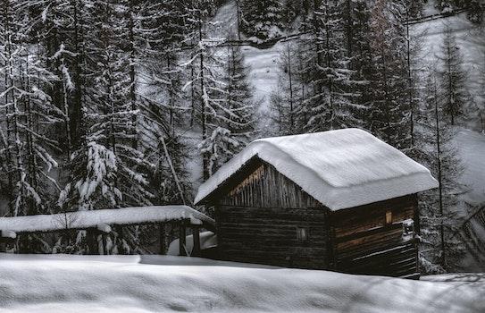 Kostenloses Stock Foto zu kalt, schnee, landschaft, natur