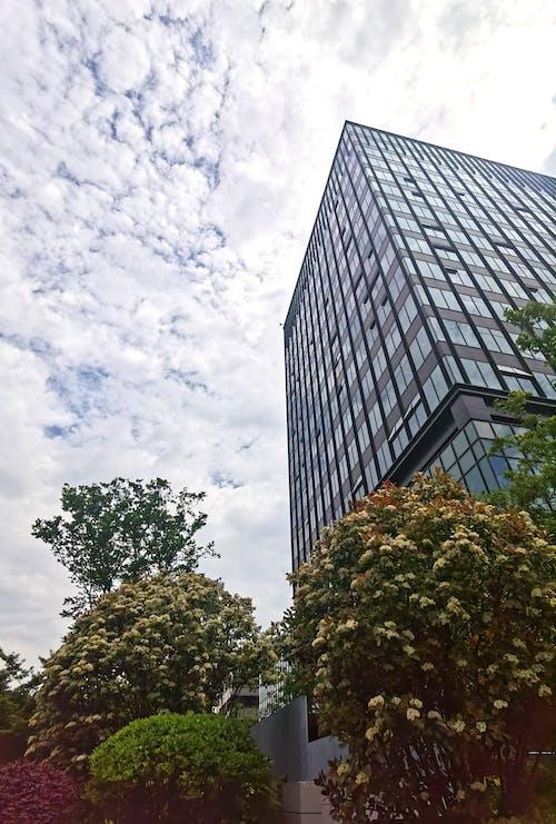 Бесплатное стоковое фото с здание, 城市, 建筑