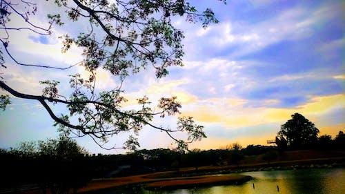 云, 剪影, 天空 的 免费素材图片