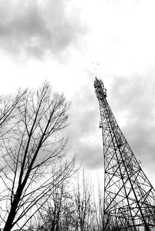 Бесплатное стоковое фото с башня, 铁塔