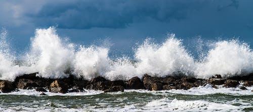 Gratis arkivbilde med brytende bølge, bølge, bølger, hav