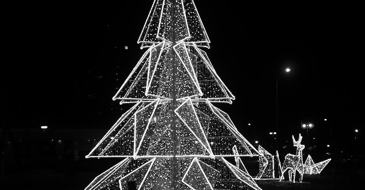 Free Stock Photo Of Black And-white, Christmas Tree, Theme