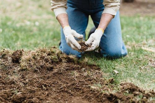 Crop gardener on grassy ground