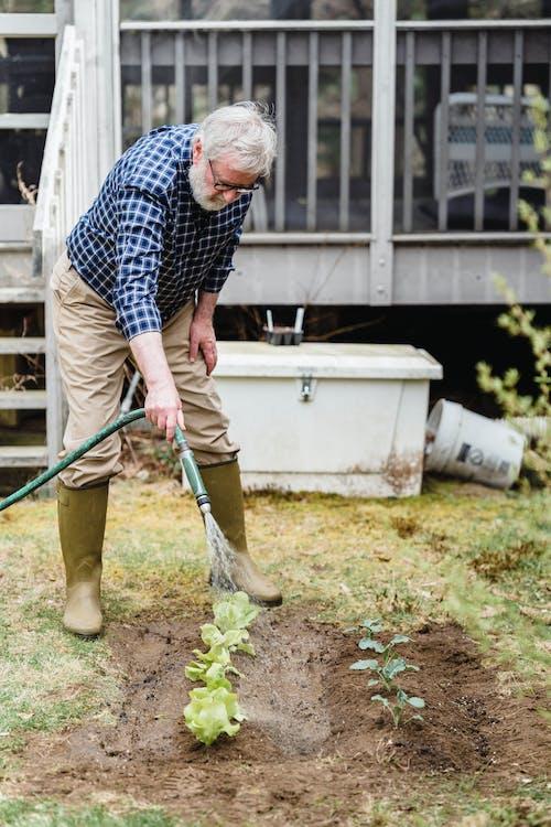 Immagine gratuita di acqua, agricoltura, anziano