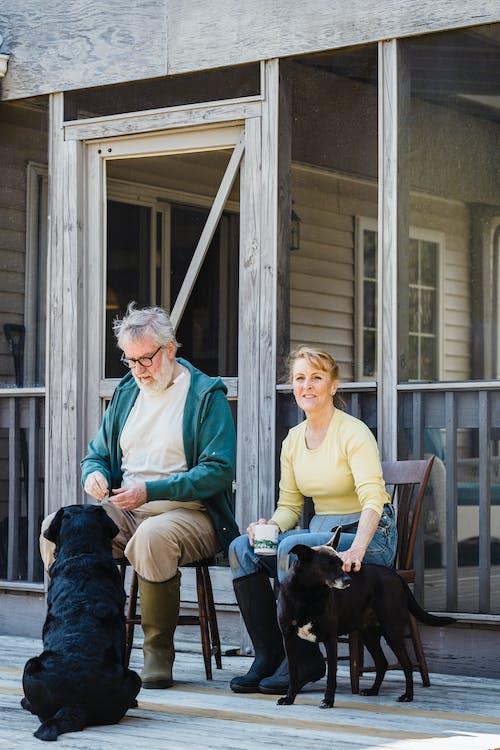 개, 남편, 낮의 무료 스톡 사진