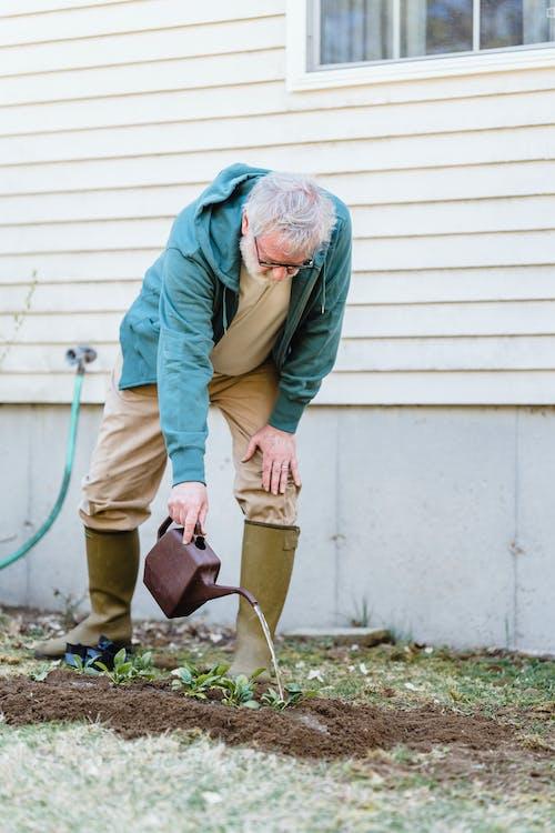 Senior man watering seedlings near wall