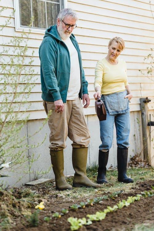Senior couple examining seedlings near building wall