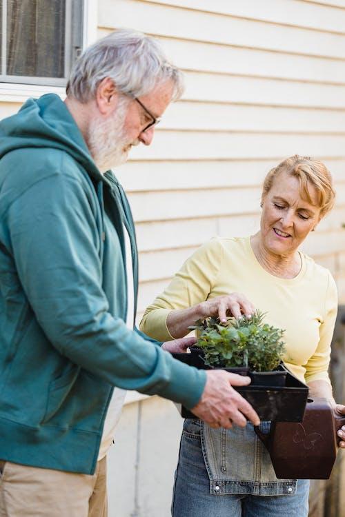 흰색 크루 넥 셔츠에 여자 옆에 녹색 식물을 들고 녹색 스웨터에 남자
