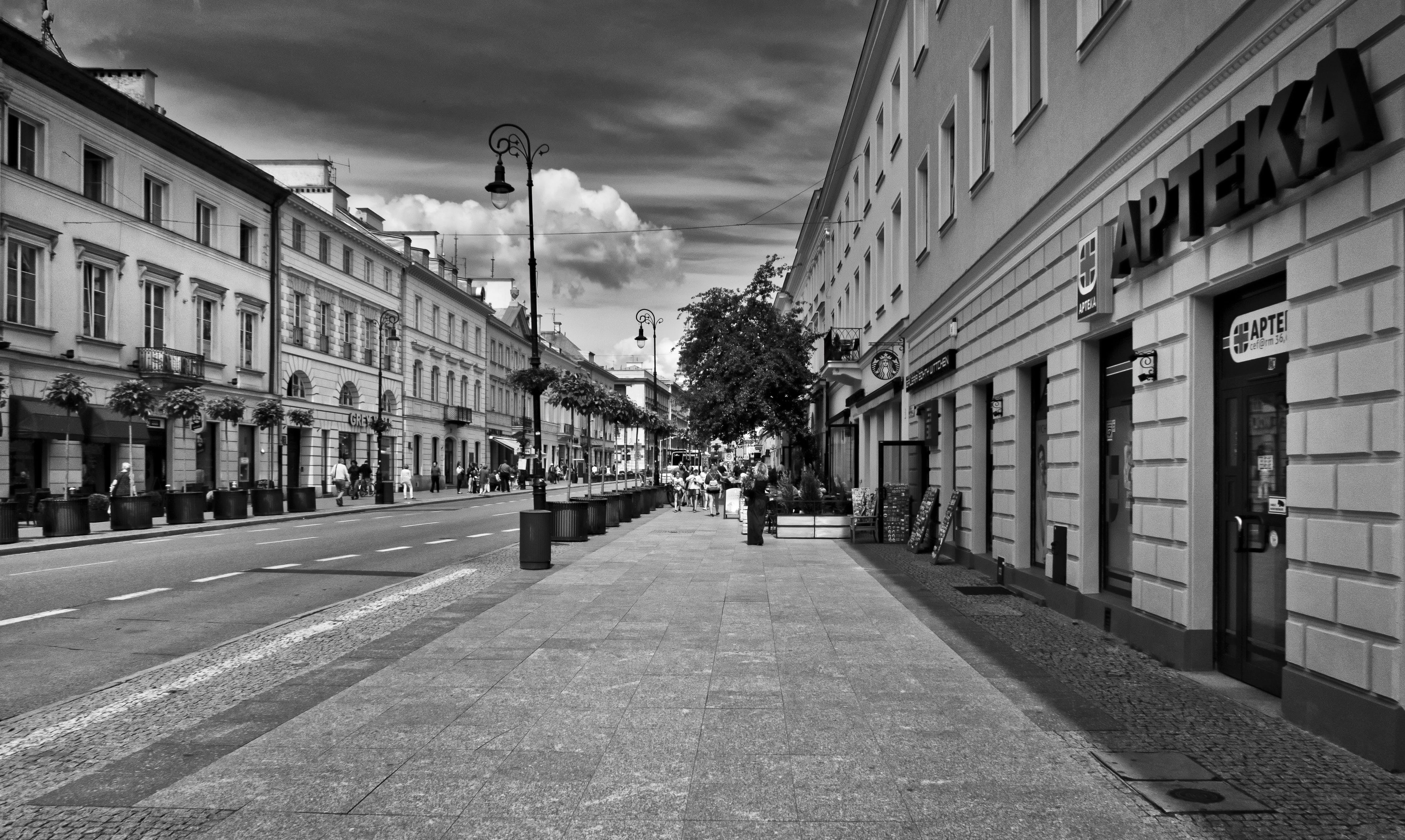 Greyscale Photo Of Road With Buildings
