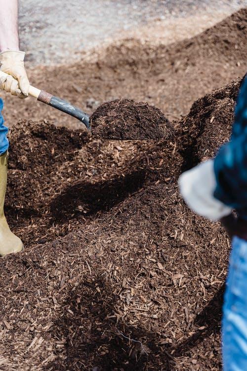 Fotos de stock gratuitas de compost, mano, pala
