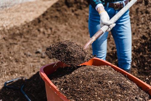 Fotos de stock gratuitas de compost, cubo, pala