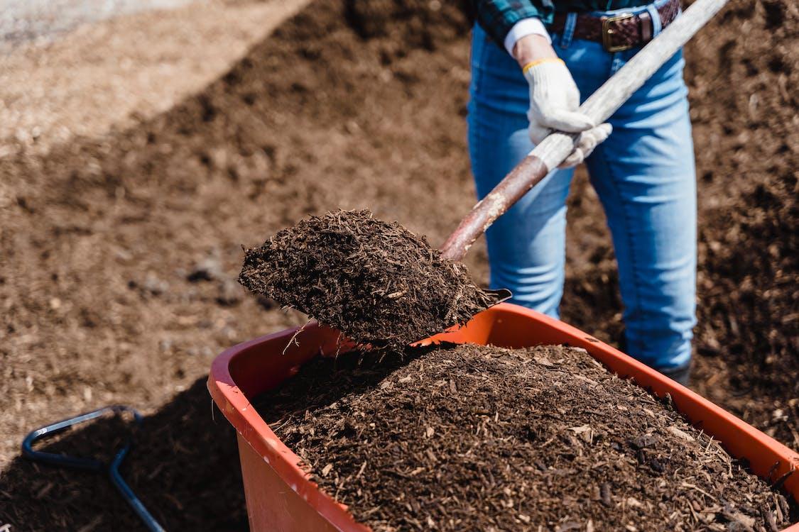土, 土壤, 堆肥 的 免費圖庫相片