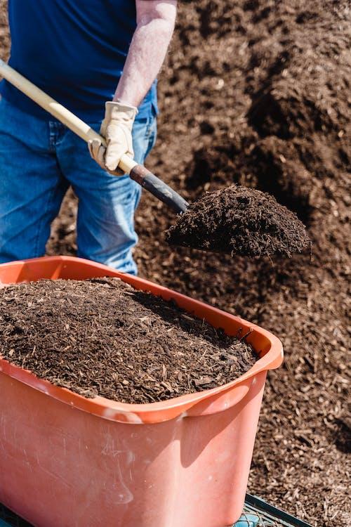 Fotos de stock gratuitas de compost, cubo, mano
