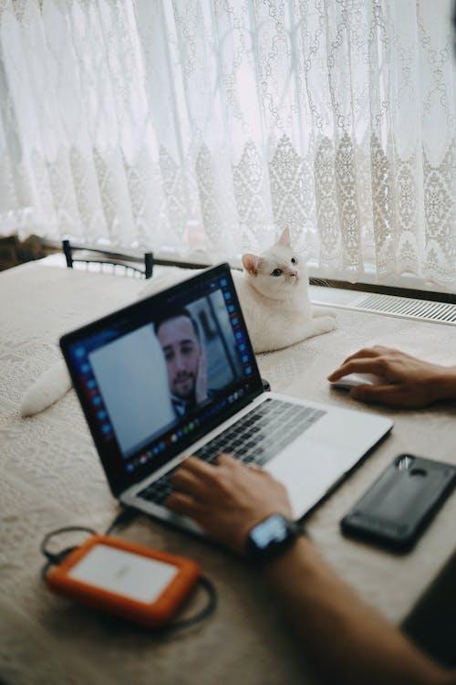Бесплатное стоковое фото с Анонимный, безликий, белый