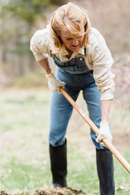 Imagine de stoc gratuită din adult, bătrân, femeie