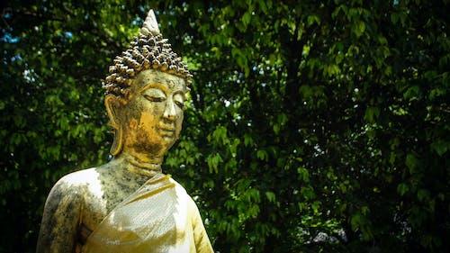 Δωρεάν στοκ φωτογραφιών με Βούδας