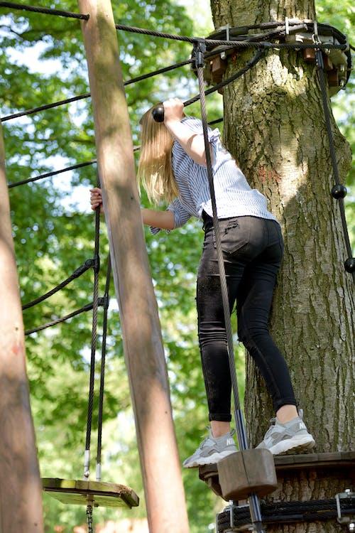 Fotos de stock gratuitas de arboles, gimnasio de la selva, niña
