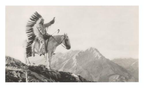 Free stock photo of american indian, canada, cherokee