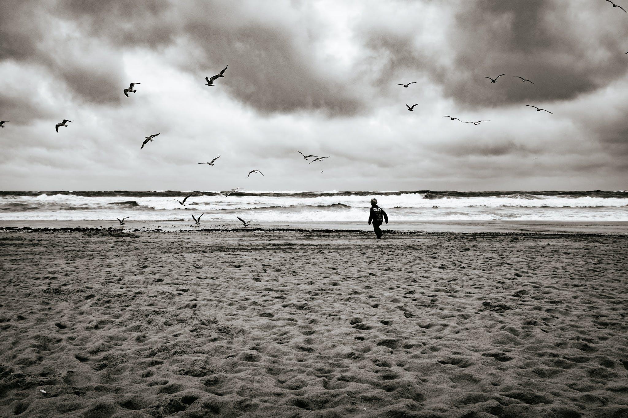 Grayscale Photography of Boy Running Near Sea