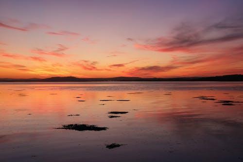 Gratis arkivbilde med daggry, h2o, hav