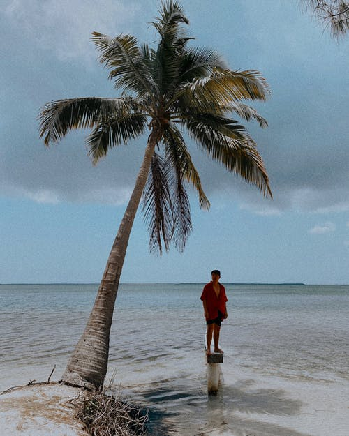 Free stock photo of age, article, caribbean