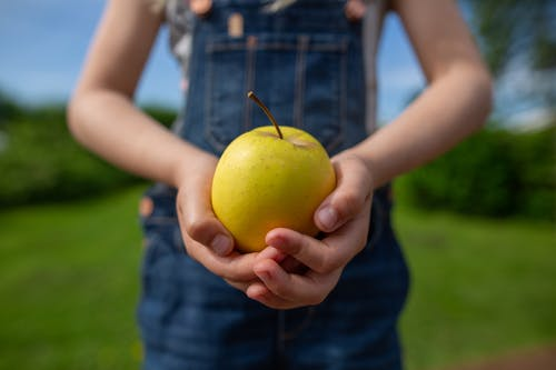 Person Holding Green Apple Fruit