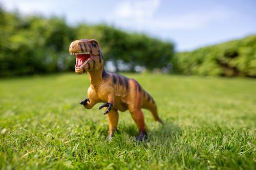 A Toy Dinosaur on the Grass