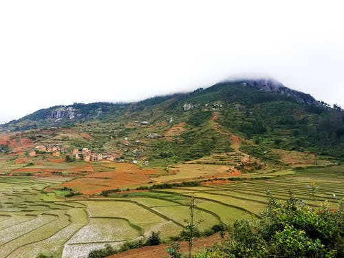 山, 平原, 景觀, 稻田 的 免费素材照片
