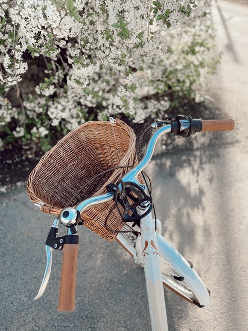 Photo of a Bicycle with a Brown Basket Near Flowers