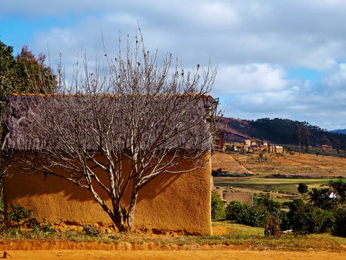 景觀, 马达加斯加 的 免费素材照片