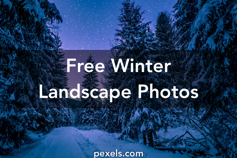 1000 great winter landscape photos pexels free stock photos