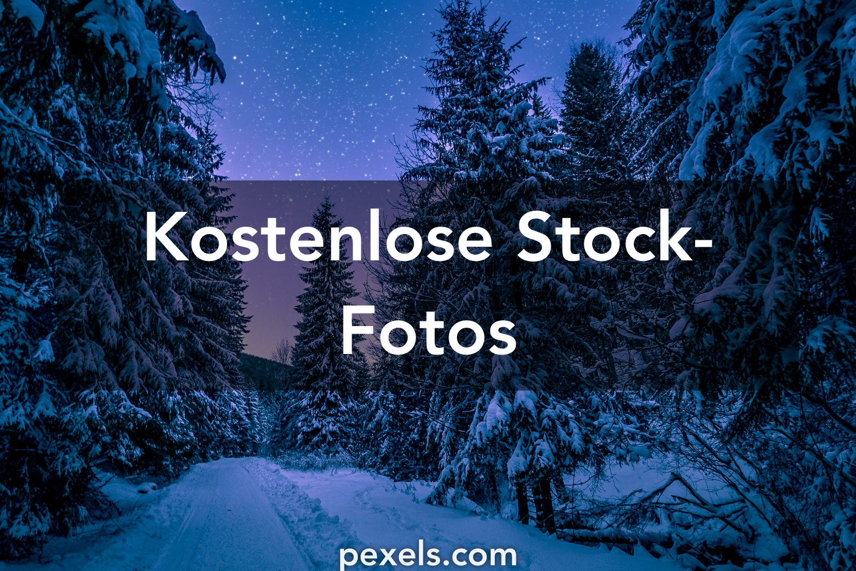 Winterbilder Pexels Kostenlose Stock Fotos