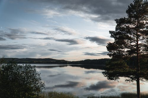 Lake Surrounded With Trees Under Cloudy Sky