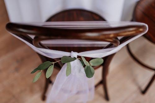 Imagine de stoc gratuită din alb, brun, cafeniu