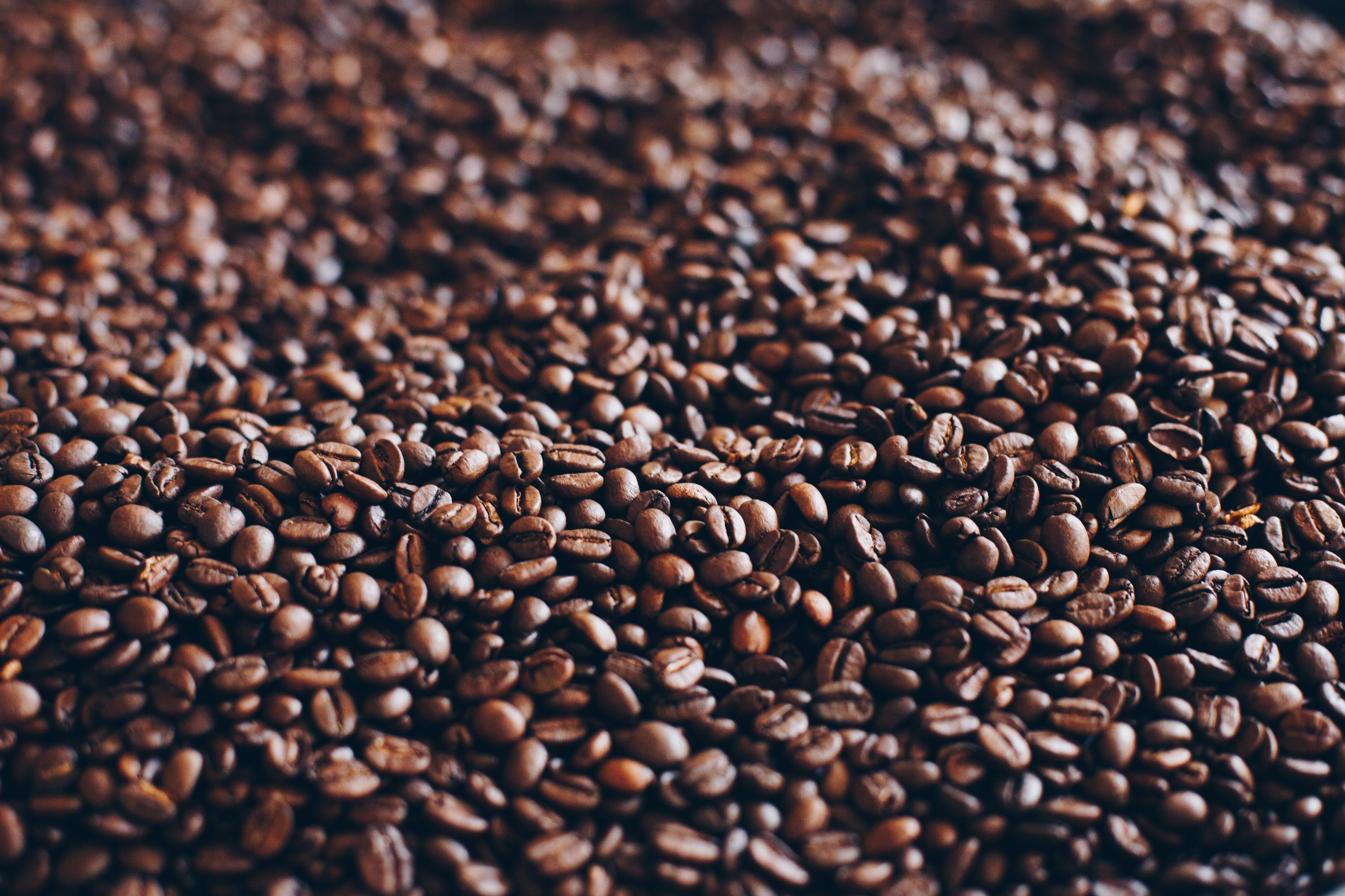 Close-Up Photography of Roasted Coffee Beans