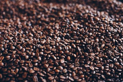 คลังภาพถ่ายฟรี ของ กอง, กาแฟ, คั่ว