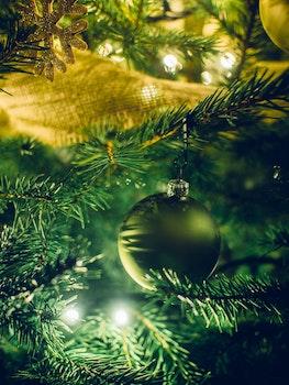 Free stock photo of close-up, christmas tree, christmas lights, decorations