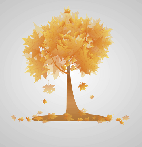 ağaç, akçaağaç içeren Ücretsiz stok fotoğraf