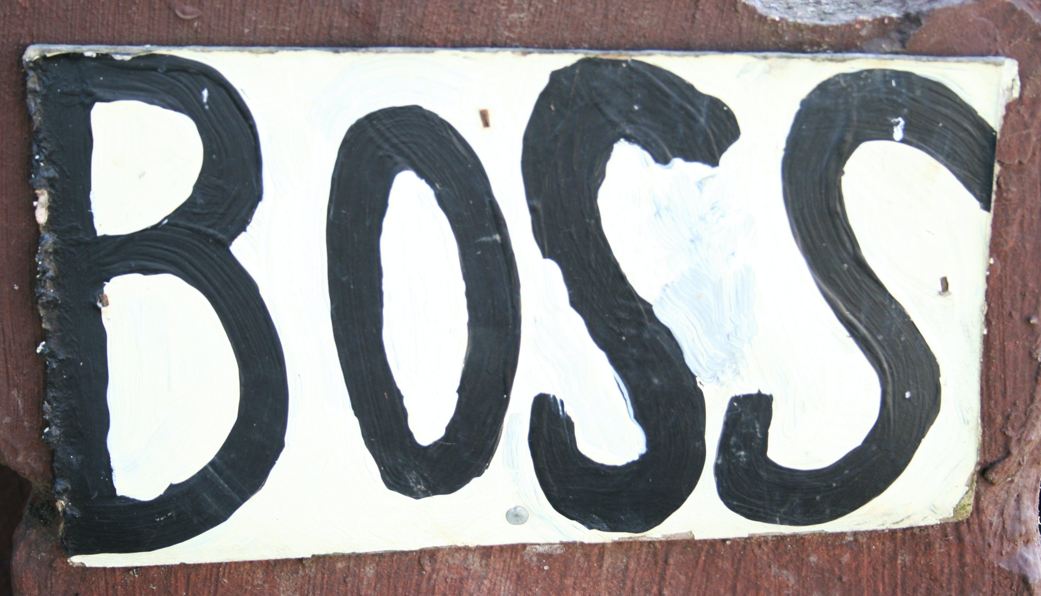 Free stock photo of art, sign, boss, paint